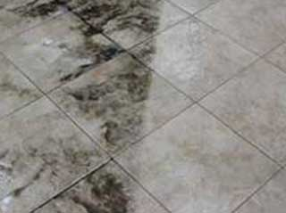 Why You Should Clean Your Tiles | Canyon Country Carpet Cleaning
